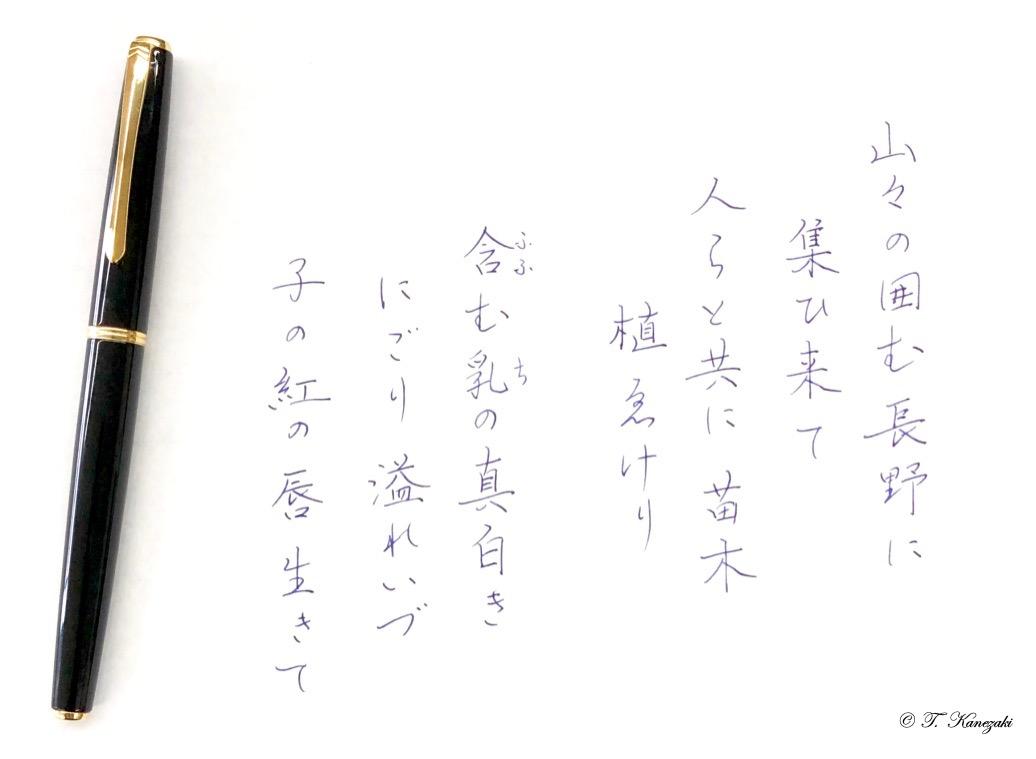 http://kanezaki.net/blog/gyosei02.jpgIMG_4209.jpeg