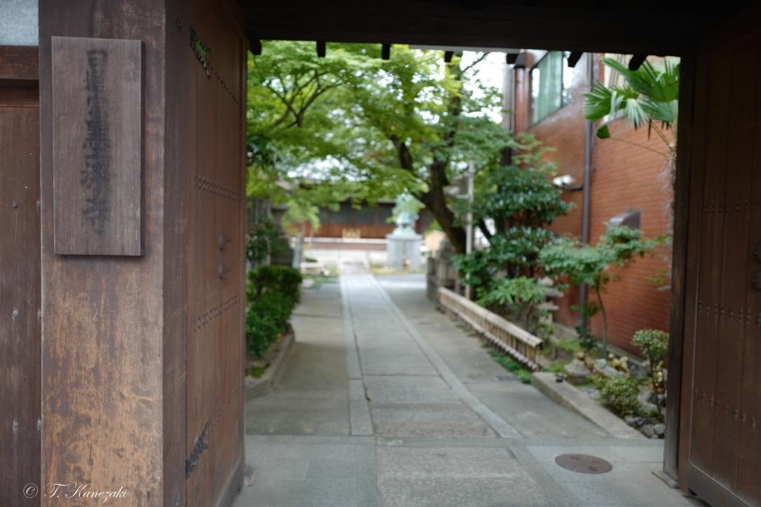 墨染寺にて
